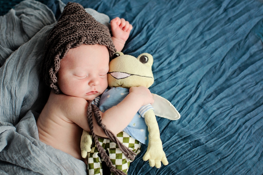 Where the Wild Things Are Newborn Photo Session
