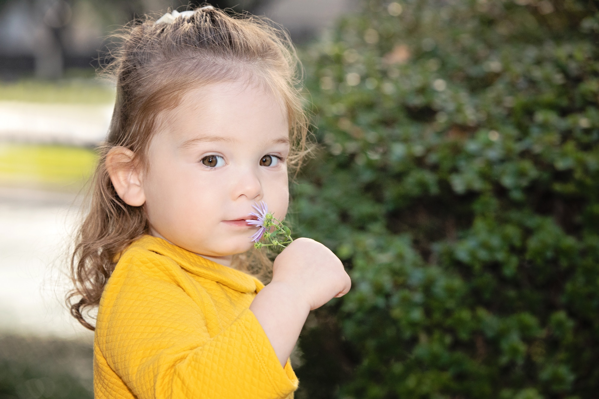 the cutest little girl poses during family session
