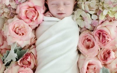 Tiny Glam   Dallas   Newborn