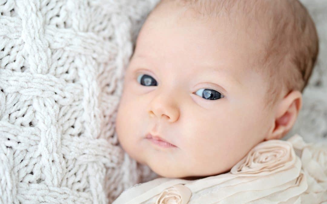 Cuteness Overload |  Dallas | Newborn Session